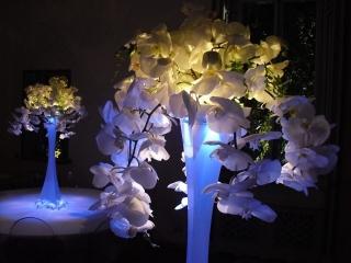Arreglos Florales Personalizados - Arte, Tierra y Jardín